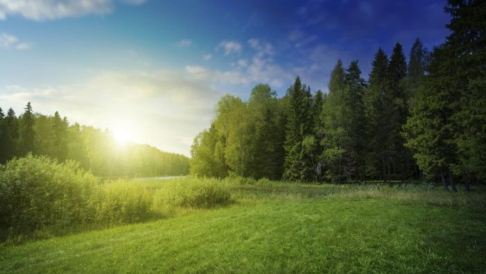 What is the definition of land conservation?