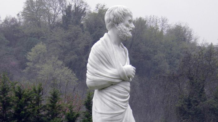 What Did Aristotle Believe About Human Nature?