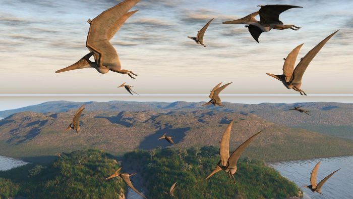 Where Did Dinosaurs Live?