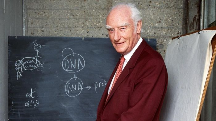 Did Francis Crick Use LSD?