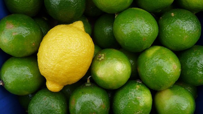 What are the differences between lemons and limes?