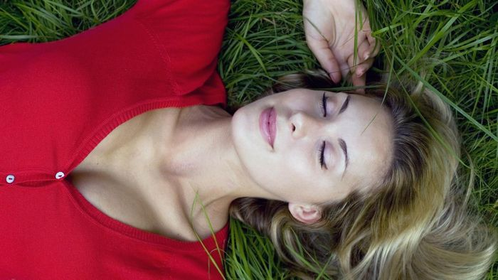 How Do Dreams Occur in the Brain?