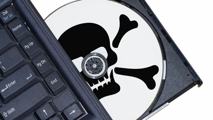 What Are the Effects of Computer Piracy?