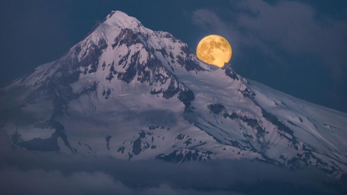 What is the elevation of Mt. Hood?