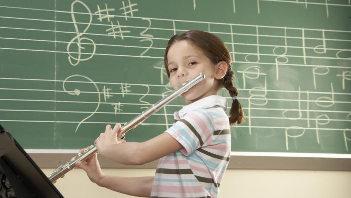 What Family Does the Flute Belong To?