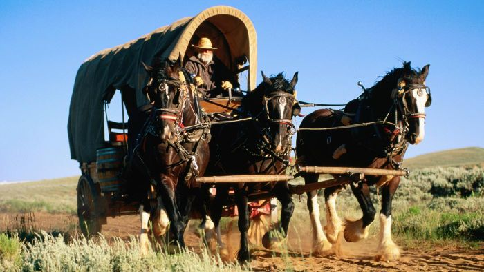 How Far Did a Covered Wagon Travel in a Day?