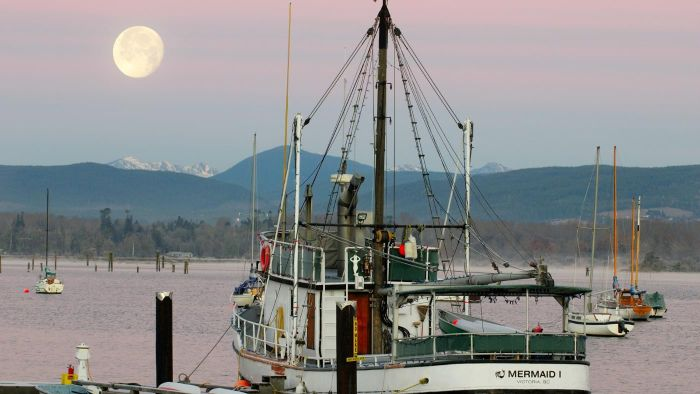 How Is Fishing Related to Moon Phases?