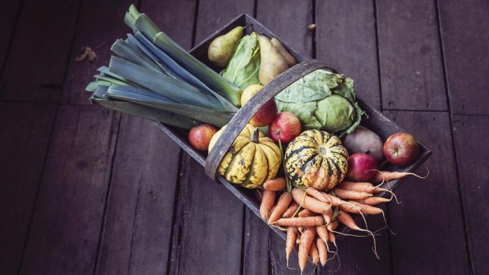 What Foods Are Beneficial for Treating or Counteracting Hyperthyroidism?