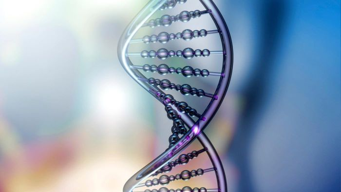 What Is a Genetic Code?