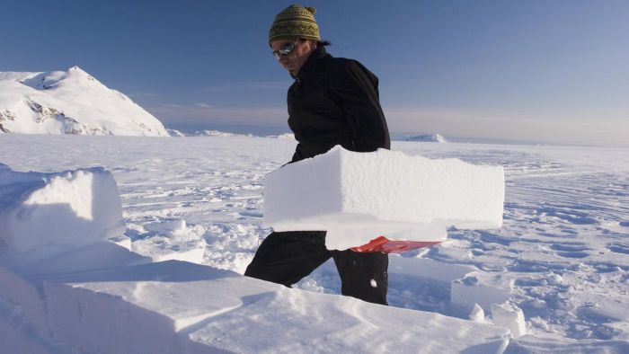What is a glaciologist?