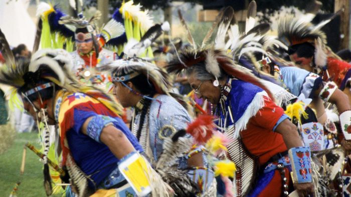 What Are the Goals of the American Indian Movement?