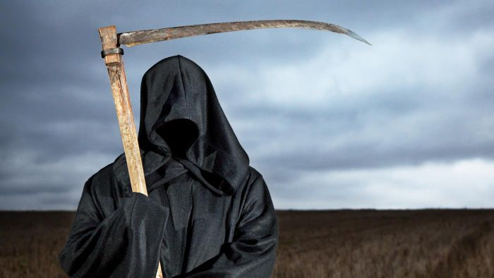 What is the Grim Reaper?
