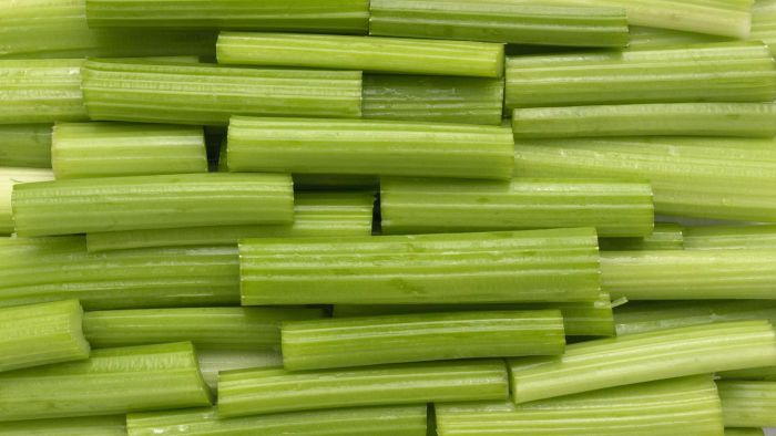 What Happens When You Put Celery in Saltwater?
