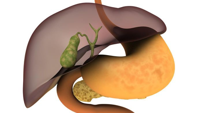 What Is a Heterogeneous Liver?