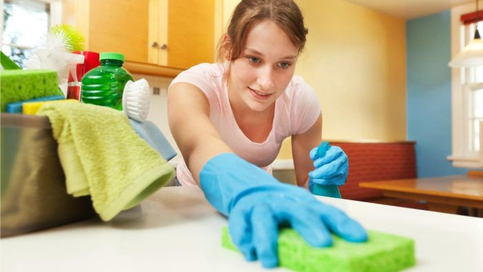 What Does a Housekeeper Do?