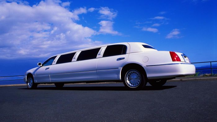 How Many People Can You Fit in a Limousine?