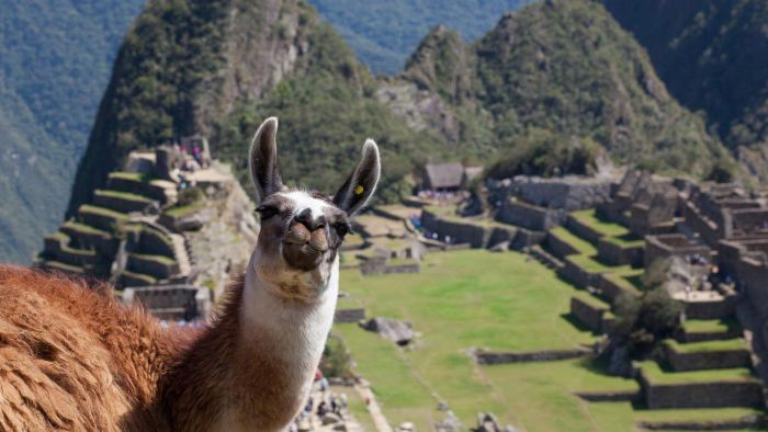Where was the Inca empire located?
