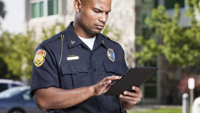 Is the Information Regarding a Traffic Ticket Available Online?