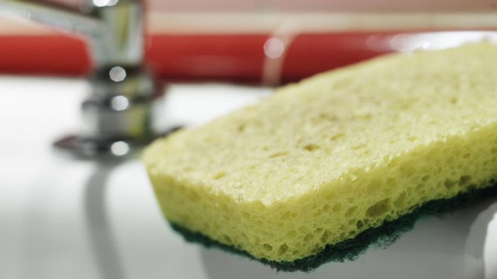 Who Invented the Kitchen Sponge?