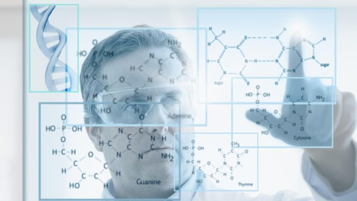 What Does the Kinetic Theory of Matter State?