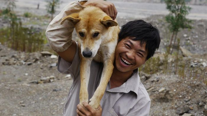 What Is a Kunming Dog?