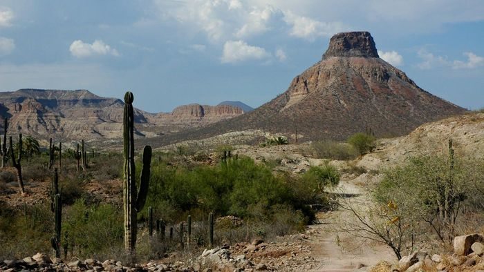 What is the landscape like in Mexico?