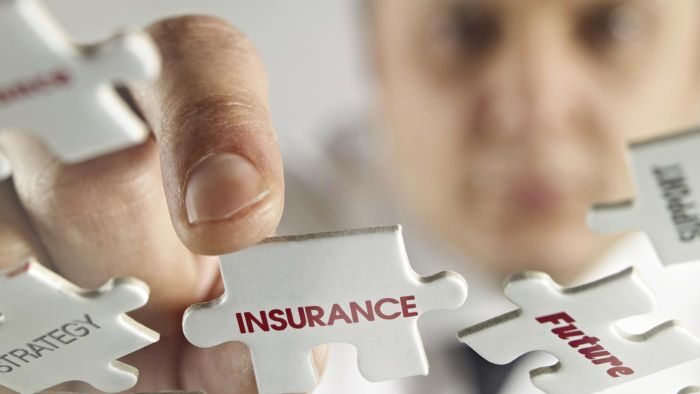 What Is the Law of Large Numbers in Insurance Theory?