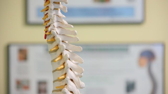 What is a lesion on the spine?