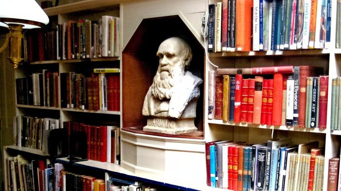 What Is a List of Accomplishments of Charles Darwin?