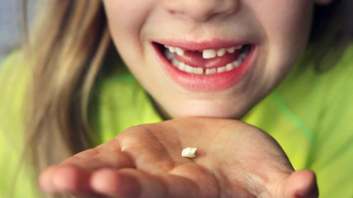 How Long Does It Take for a Permanent Tooth to Grow in After Losing a Baby Tooth?