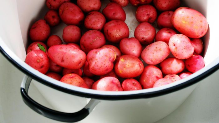 How Long Should You Boil Red Potatoes?