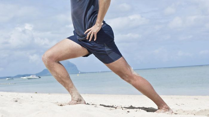 What Is the Main Function of the Quadriceps?
