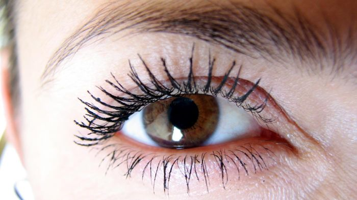How Many Eyelashes Are on the Average Human Eye?