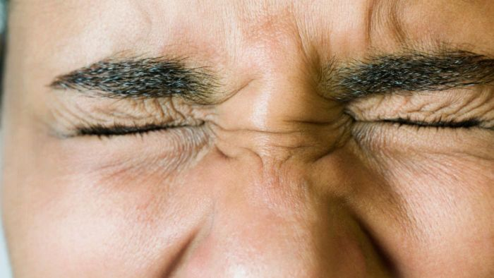 How many times does a person blink in a day?