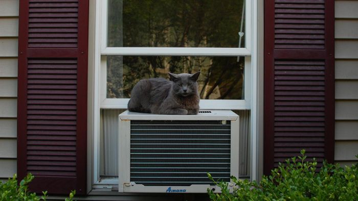 How Many Watts Does a 5000-BTU Air Conditioner Use?