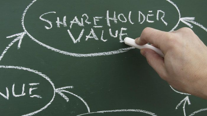 """What is the meaning of """"shareholder's funds""""?"""