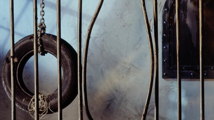 What is meant by Weber's iron cage of rationality?