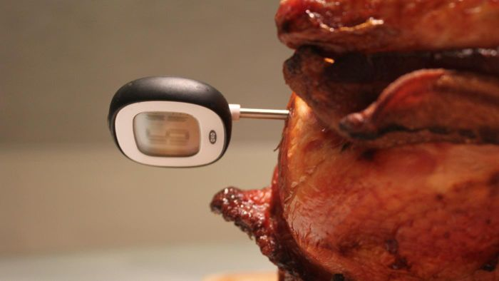 Where are meat thermometers available for sale online?