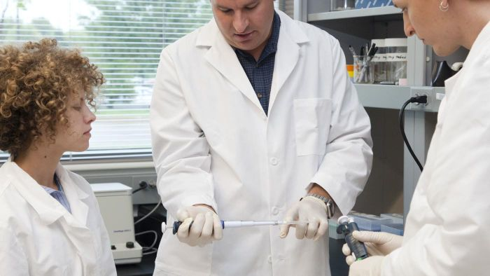What Is a Micropipette Used For?