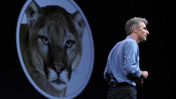What Is a Mountain Lion Tutorial?