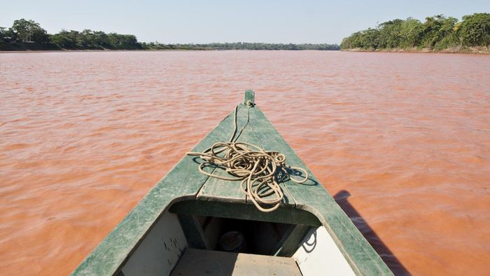 Where Is the Mouth of the Amazon River?