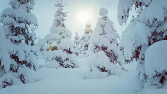 How Much Does 1 Cubic Foot of Snow Weigh?
