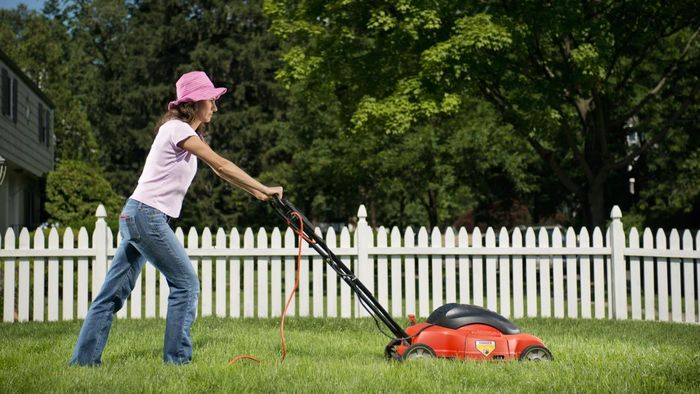 How Much Is It to Buy a Top Rated Lawn Mower?