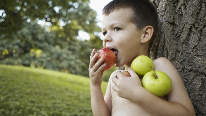How Much Dietary Fiber Is in an Apple?