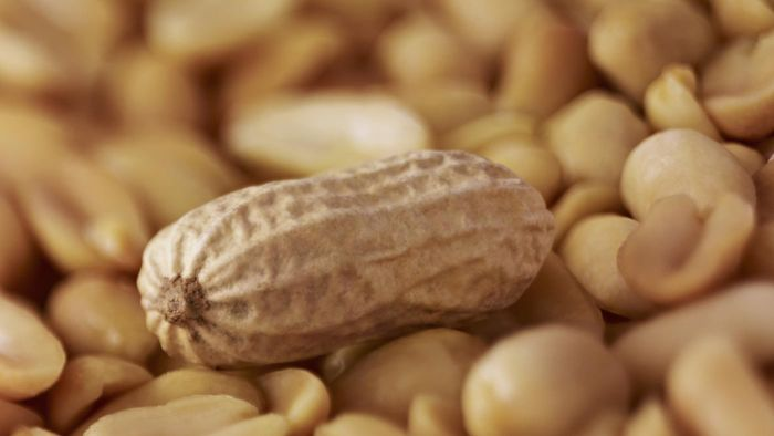 How Much Does a Peanut Weigh?
