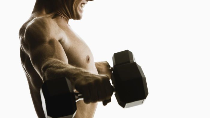 What Muscle Group Does the Standing Lateral Raise Primarily Work?