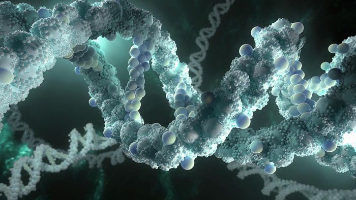 Why must DNA be able to make copies of itself?