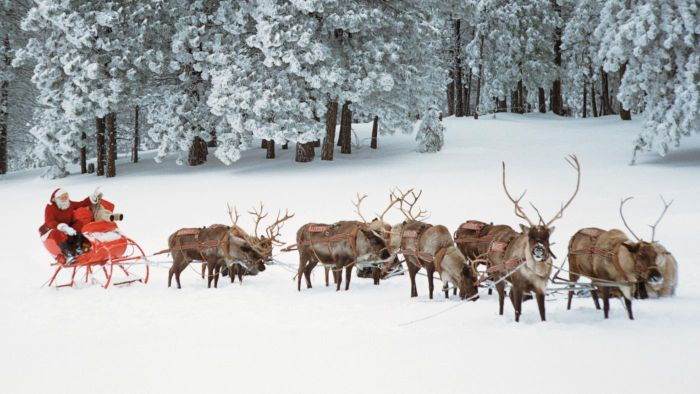 what are the names of santa claus reindeer - Santa With Reindeer Pictures