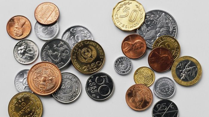 What Is a Numismatist?
