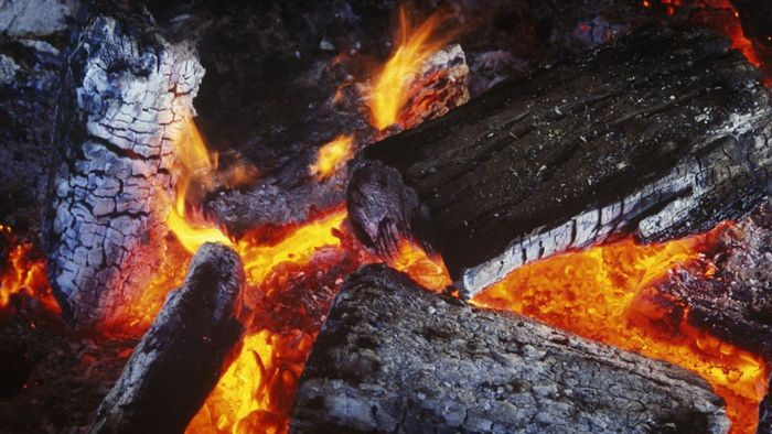 Are There Online Websites for Wood-Burning Hobbyists?